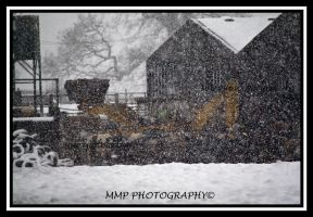 JCB in snow storm by 001mark