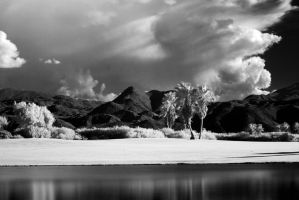 Infrared Landscape by IsACoolGuy