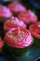 Cupcakes by PortiaPhotography