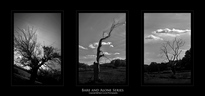 Bare and Alone Series by Reef420