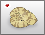 Ball Python used Defense Curl by TheAngryFishbed