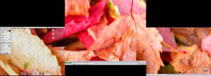 autumn desktop by cman
