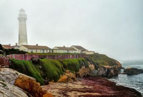 Foggy Day at Pigeon Point by PaulWeber