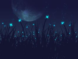 blooming in the night by vandervals
