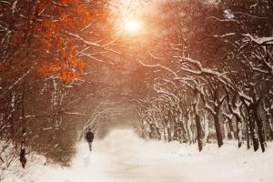 winter walk by ildiko-neer