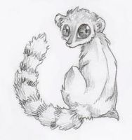 Lemur- for Obsessive-Badger by Tsubane