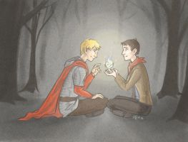 Merlin and Arthur by Nevheera