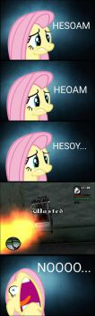 Fluttershy wrong type when cheat HESOYAM by AryaTheEditor