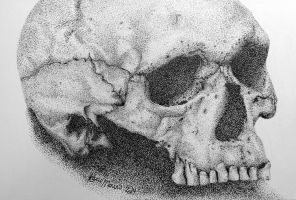 Skull Stipple by ninangame