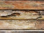 Wood_IN-TEXTURE016 by laurent68
