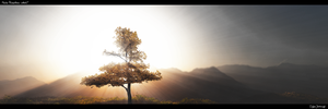 Tree of Life v. 2 by artech7
