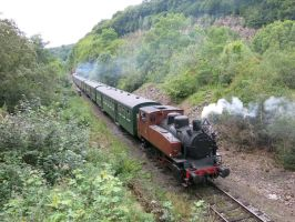 Dorinne-Durnal 150814 Steam in the valley by kanyiko