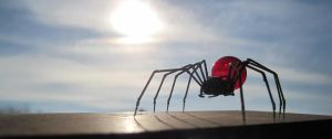 Spider No 40 with Sol by AMechanicalMind