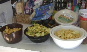 Apples peeled sliced cored in bowls by dtf-stock