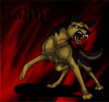 Ginga - John by PolisBil