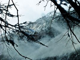 Mountain Andorra by shepsoverthere