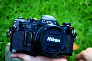 canon or nikon? by JackieTakanori