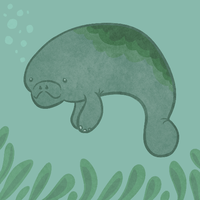 Happy Manatee Floating gif by themarvelgirl