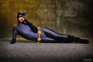 Catwoman: The Alluring Cat Burgular by ChroniclesofDestiny