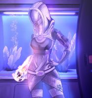 Tali'Zorah vas Normandy by ellieshep