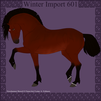 Winter Import 601 by ThatDenver