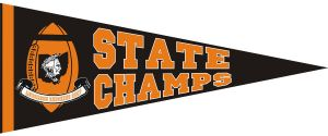 Anderson State Champs Pennant by cionbird