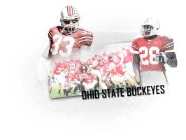Ohio State Buckeyes by braxa88