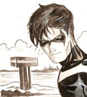 DC P01 NIGHTWING by Reiver85