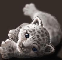 Baby snow leopard by Athena-Erocith