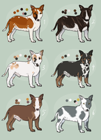 [Natural] Bull Terriers (closed) by Pred-Adopts