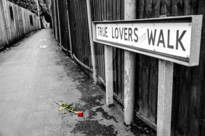 True Lovers Walk by Cazza2010