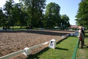 Dressage Arena Stock 6 by LuDa-Stock