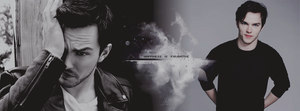 Nicholas Hoult by Absolute-A
