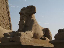 Sphinx and the Sponsor by vdf
