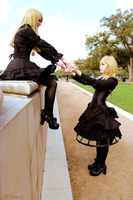 LOLI: little birds by a-c-photography