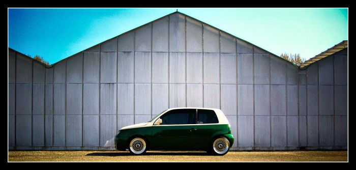 Lupo landscape D2 by Andso