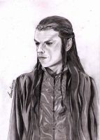 Lord Elrond. (LOTR) by miKanirI