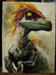 Feathered Velociraptor by TheFranology