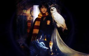 Harry and the owl by AnnGeea