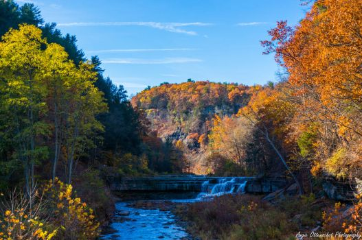 Taughannock in Autumn II by Angelan-sama