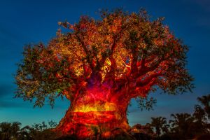 Tree of Life Awakening 4 by Earth-Divine