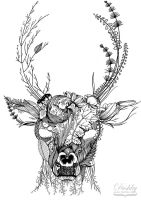Floral Deer by dushky