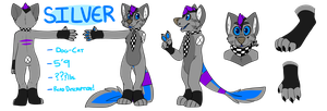Silver Reference Sheet - June 2013 by catdoq