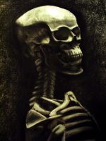 Skeleton Study by Christa-S-Nelson