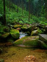 Stream in mountains II by Vrolok87