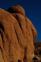 Joshua Tree Stones by stevecliff