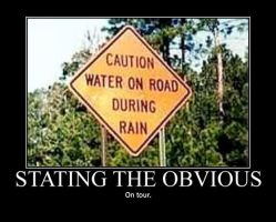 Poster - STATING THE OBVIOUS by E-n-S