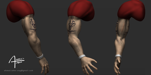 Arm Study - Color Test by Ahmed-Taher