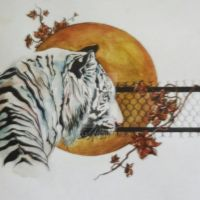 White Tiger by yell5