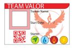 Team Valor ID Card by Gray-Vizard